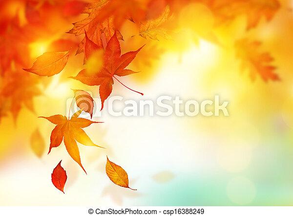 feuilles, automne, tomber - csp16388249