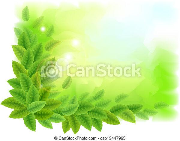 feuilles vertes, ensoleillé, fond - csp13447965