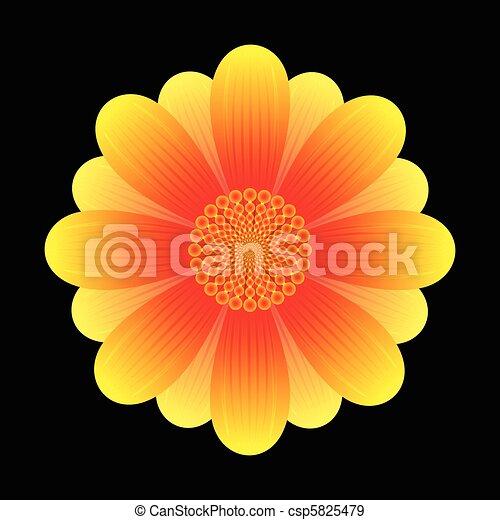 fleur, tournesol, résumé - csp5825479