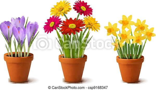 fleurs, coloré, printemps, pots - csp9168347