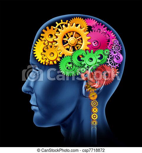 fonction, cerveau - csp7718872
