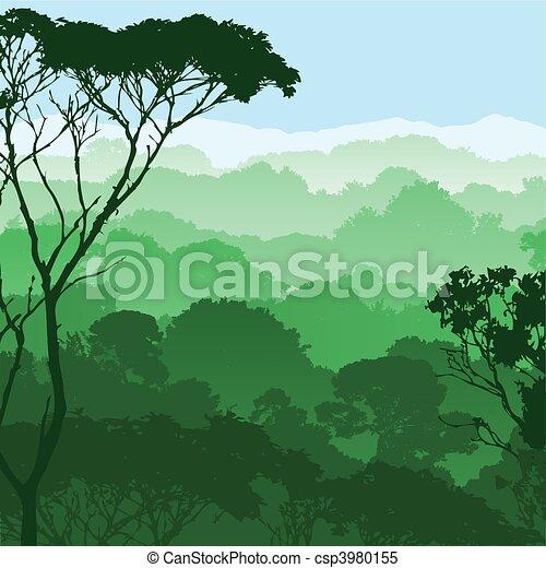 forêt, paysage - csp3980155