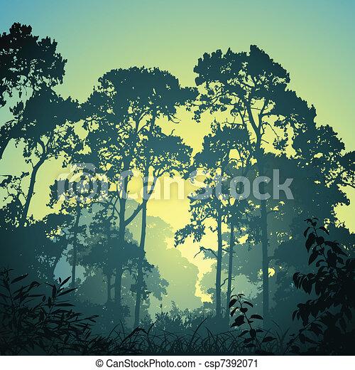 forêt, paysage - csp7392071