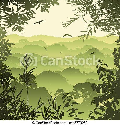 forêt, paysage - csp5773252
