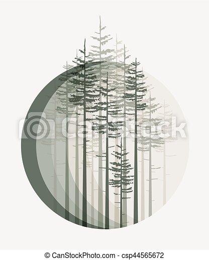 forêt, paysage - csp44565672