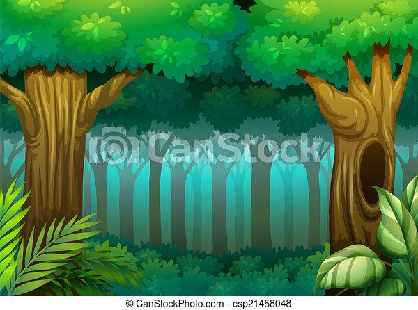 forêt, profond - csp21458048