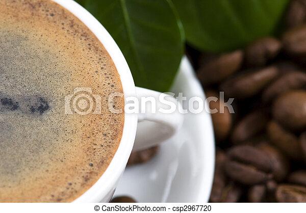 frais, café, branche - csp2967720