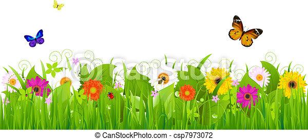 frais, paysage, nature - csp7973072