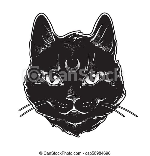 front, chat, sien, noir, lune - csp58984696