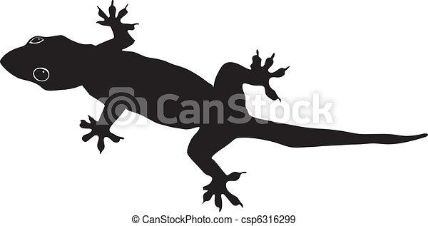 gecko - csp6316299