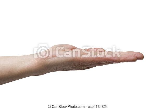 """""""gesture - csp4184324"""