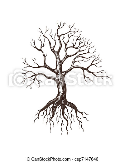 grand, sans feuilles, arbre - csp7147646