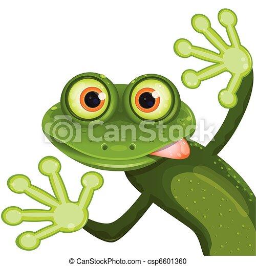 grenouille - csp6601360