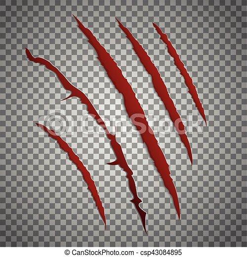 griffe, arrière-plan., vecteur, entaille, marques, transparent, ensemble, grattement, égratignure, rouges, bête - csp43084895