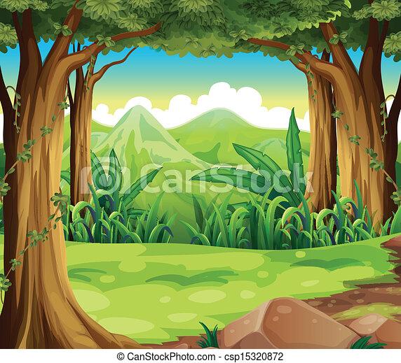hautes montagnes, forêt verte, travers - csp15320872