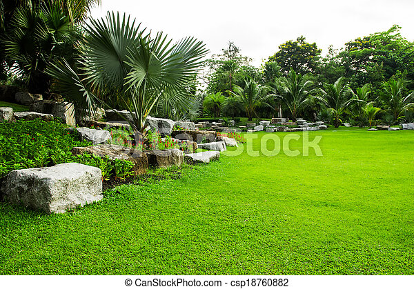 herbe champ, parc, vert - csp18760882