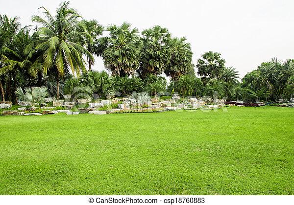 herbe champ, parc, vert - csp18760883