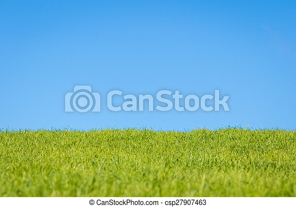 herbe, ciel - csp27907463