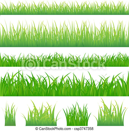 herbe verte, arrière-plans, 4, touffes - csp3747358