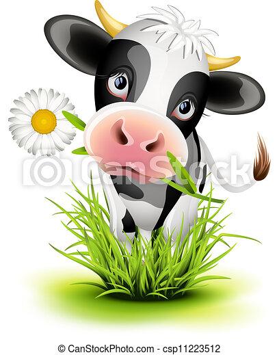 holstein, herbe, vache - csp11223512