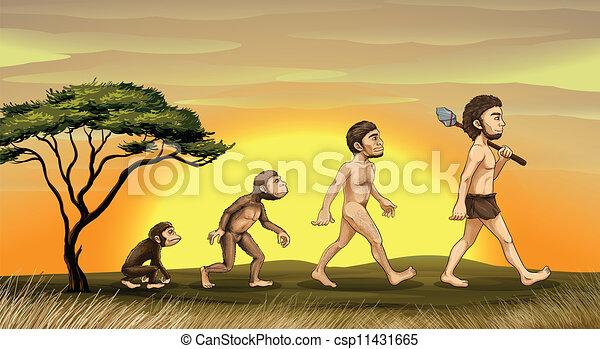 homme, évolution - csp11431665