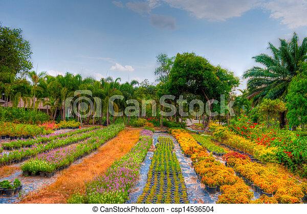 jardin - csp14536504
