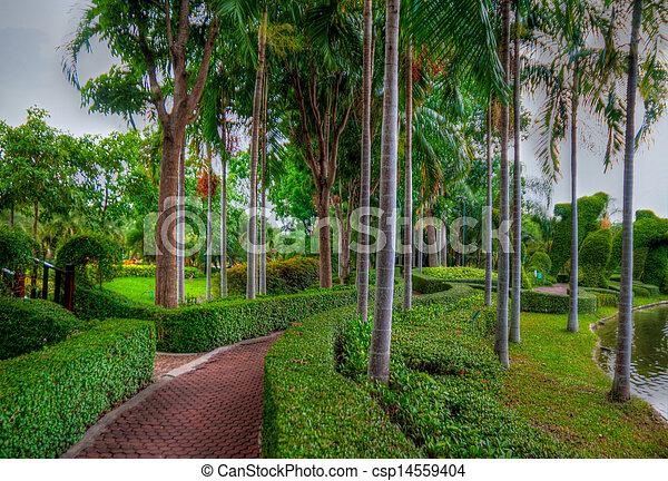 jardin - csp14559404