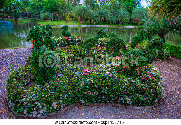 jardin - csp14537151