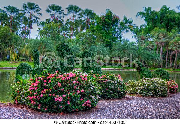 jardin - csp14537185