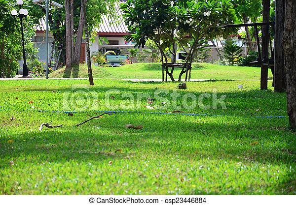 jardin - csp23446884