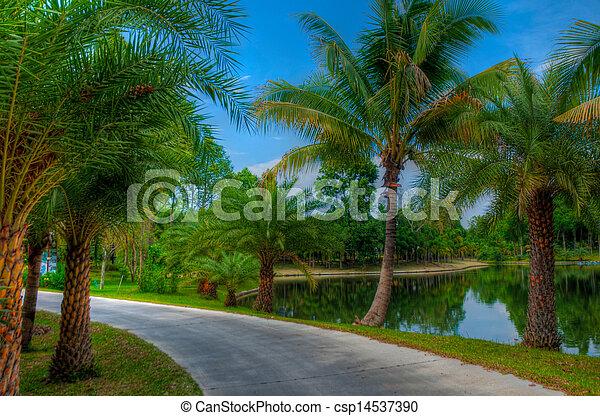 jardin - csp14537390