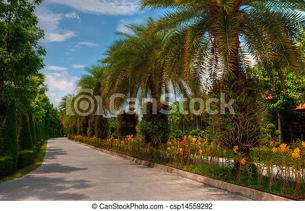 jardin - csp14559292