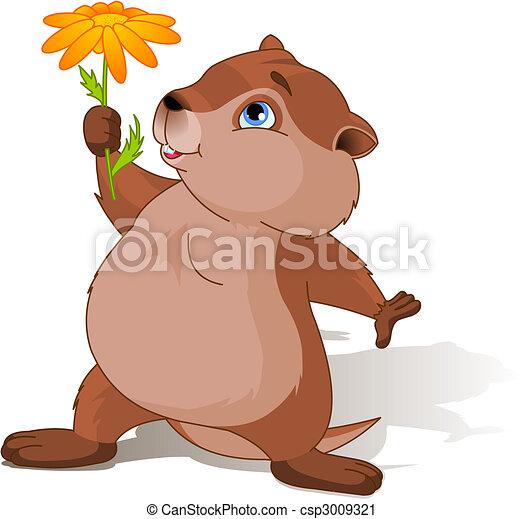 jour, marmotte amérique - csp3009321