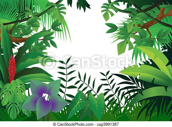 jungle, fond - csp3991387