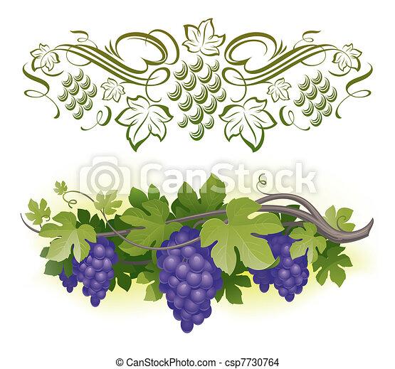 mûre, &, -, vigne, illustration, calligraphic, vecteur, decorarative, raisins - csp7730764