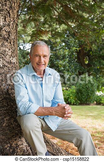 mûrir, arbre, séance, coffre, homme, heureux - csp15158822