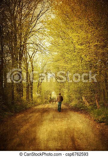 marche, solitaire, route, homme, pays - csp6762593