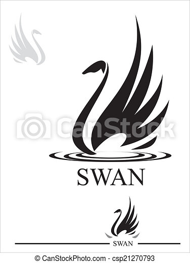 noir, swan., cygne - csp21270793