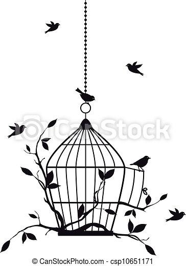 oiseaux, vecteur, gratuite - csp10651171