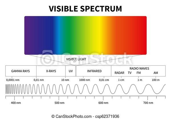 pédagogique, diagram., couleur, électromagnétique, spectre, école, vague, visible, vecteur, fond, lumière, physique, frequency. - csp62371936