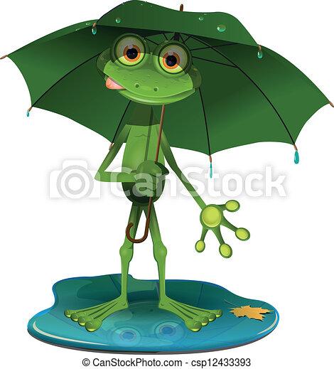 parapluie, grenouille verte - csp12433393
