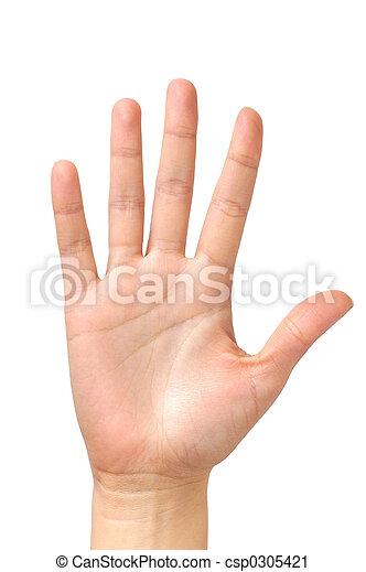 paume, isolé, main femelle - csp0305421