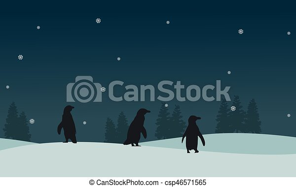 paysage, silhouette, glace, manchots - csp46571565