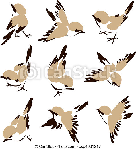 peu, oiseau, illustration - csp4081217