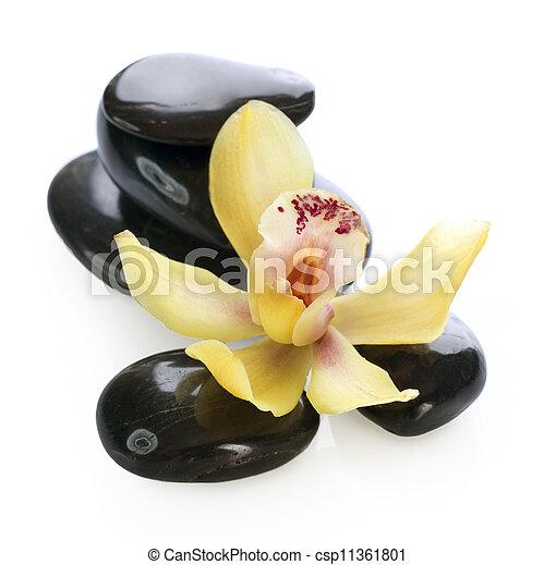 pierre, masage, spa - csp11361801