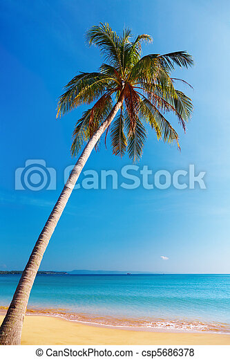 plage, thaïlande, exotique - csp5686378