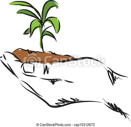 plante, main, illustration, pendre - csp15312673