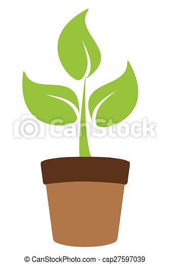 plante - csp27597039