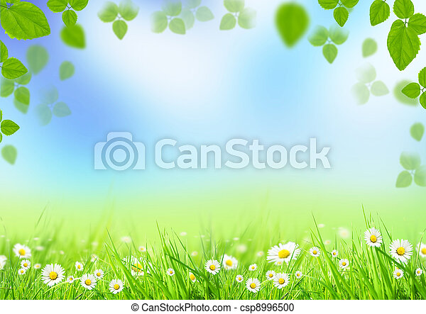 printemps, fond - csp8996500