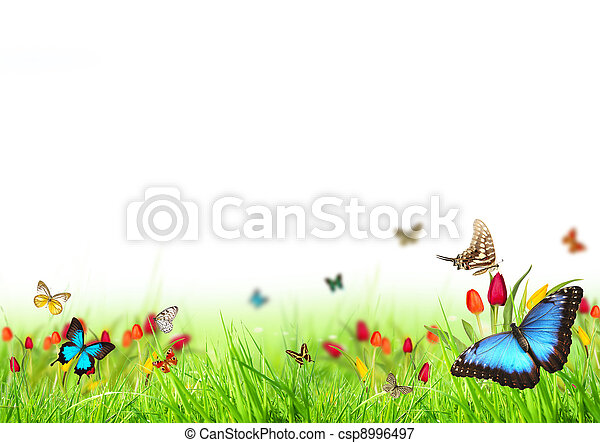 printemps, fond - csp8996497